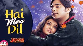 Hai Mere Dil Hindi English| Udit Narayan & Alka Yagnik Lyrics
