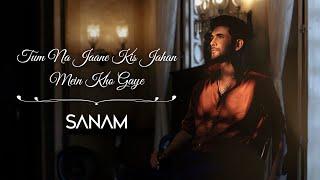 Tum Na Jaane Kis Jahan Mein Kho Gaye| Sanam Puri Lyrics